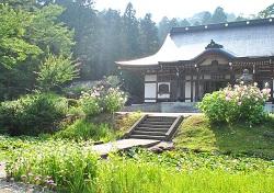 kasugayama316.jpg