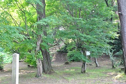 kasugayama322.jpg